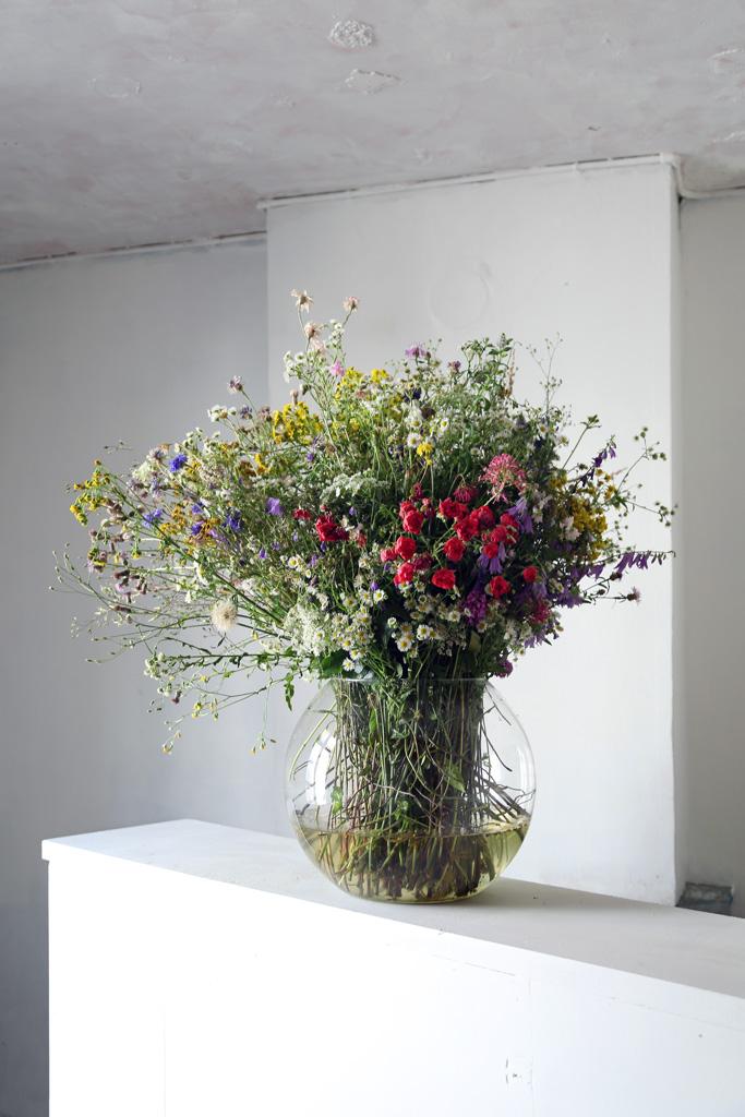 Flore de compagnie
