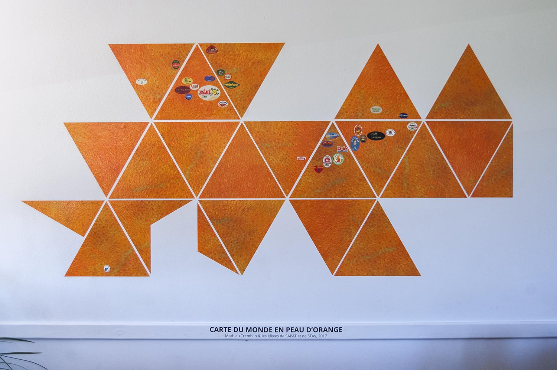 Carte du monde en peau d'orange