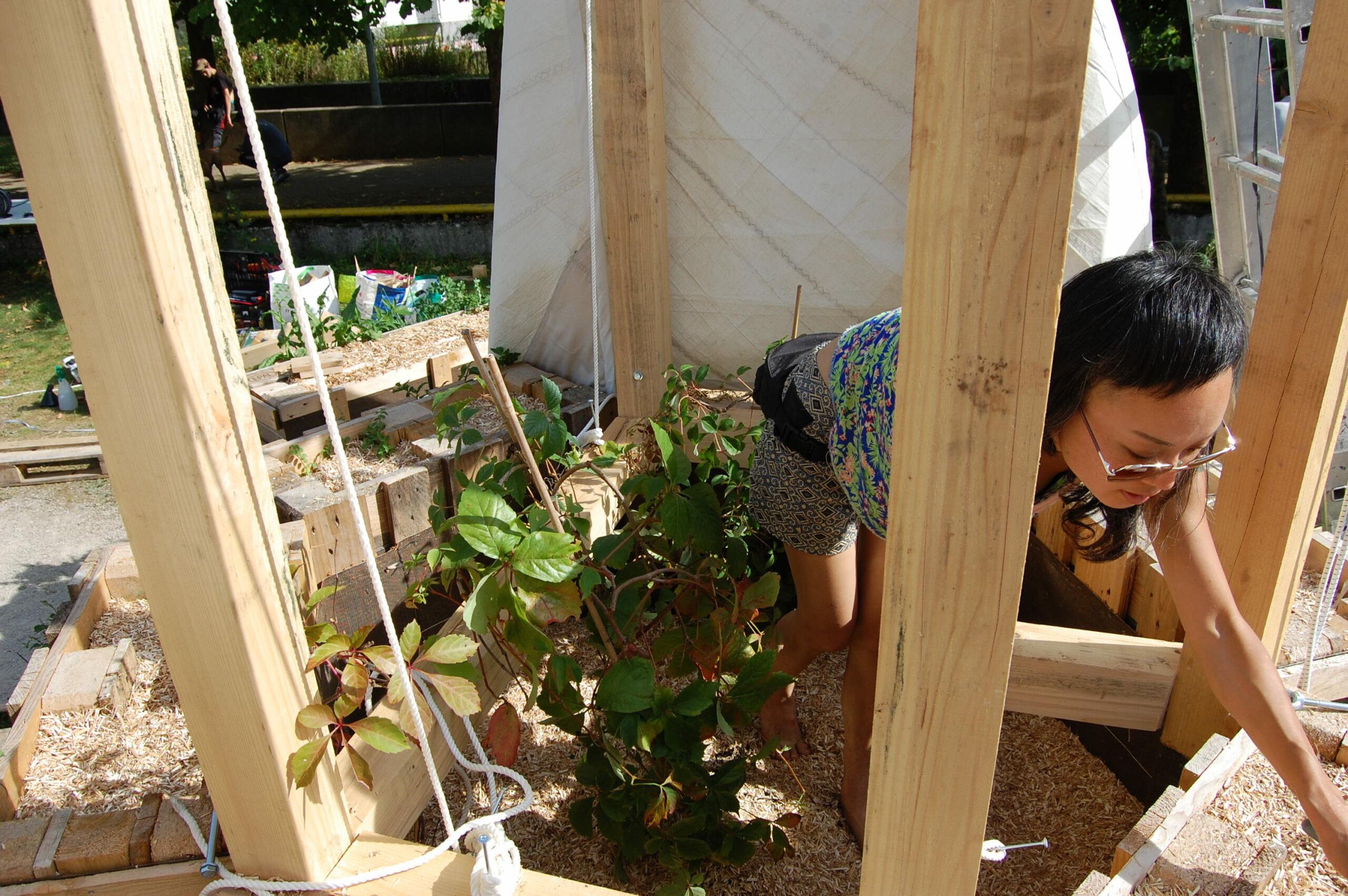 Ateliers Juste Ici – Micro-jardinage